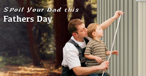 Backyard Shed – Perfect Gift For Father's Day