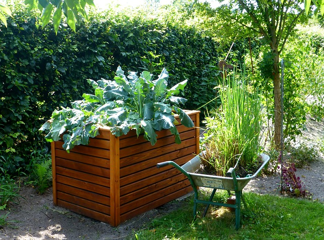 Fathers Day Gift- Raised Garden Bed