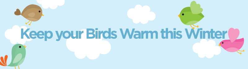 10 tips to keeping your pet birds warm in Winter