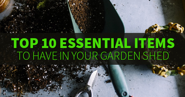 Top 10 Essential Items to Have in Your Garden Shed