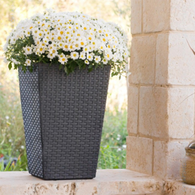 Gift Ideas for the Home and Garden- PLANTER BOX