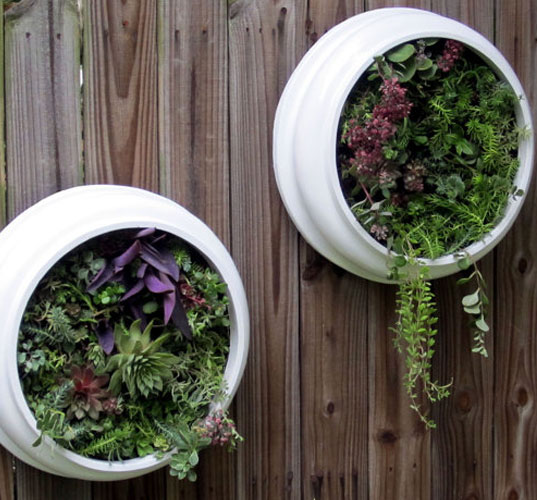 How To Create Vertical Gardens