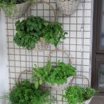 how to create vertical gardens - alternative planters