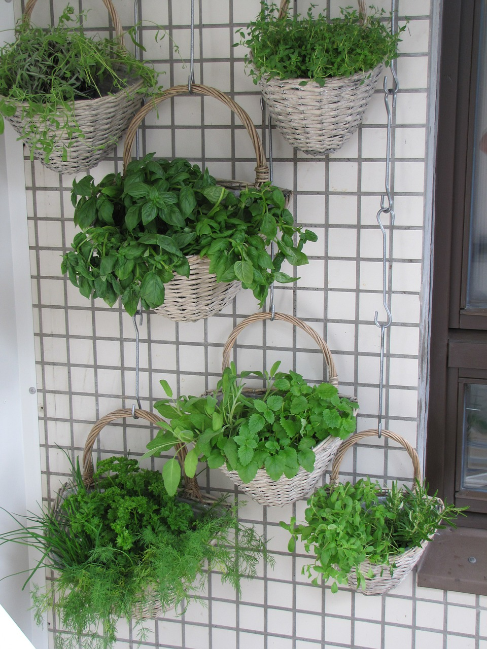 How to create vertical gardens cheap sheds blog for Cheap vertical garden
