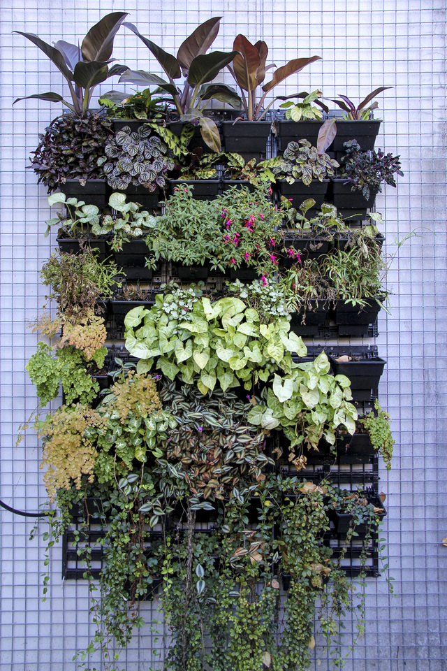 how to create vertical gardens - wood planter