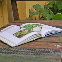 Garden Gift Ideas - books