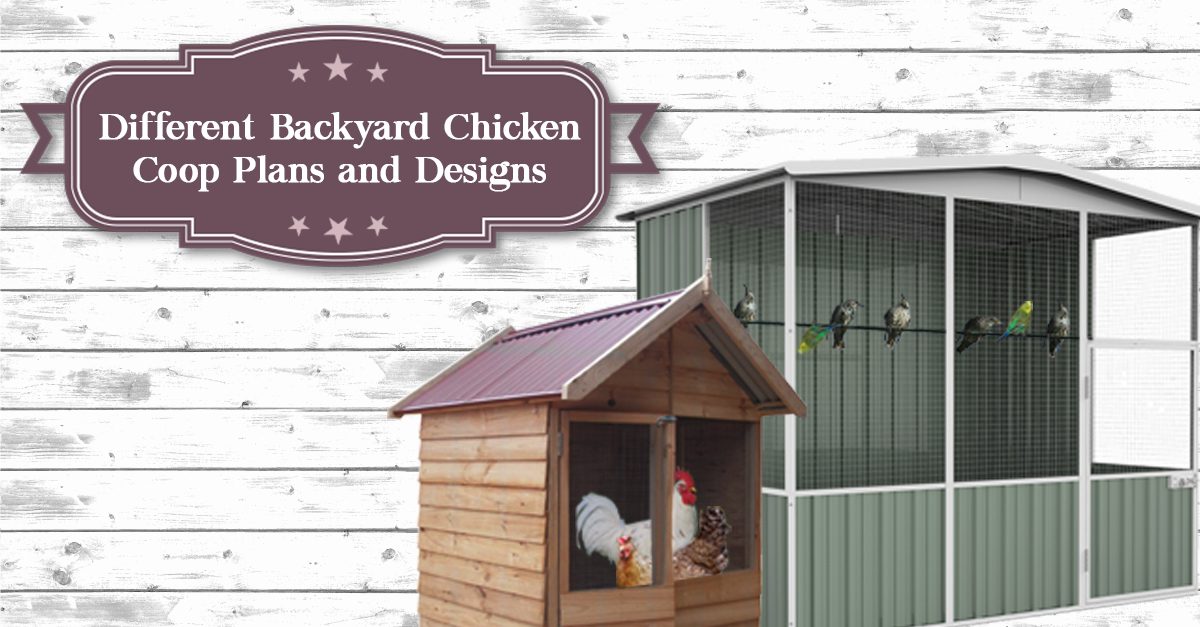 Different Backyard Chicken Coop Plans and Designs - Cheap ...