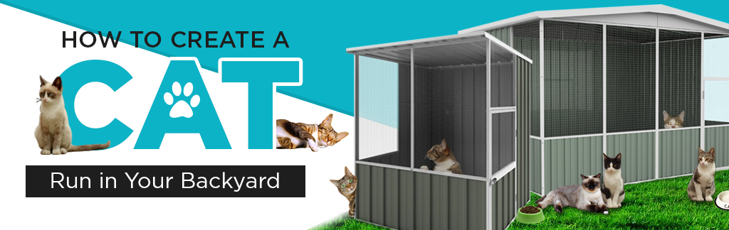 cat run in your backyard banner