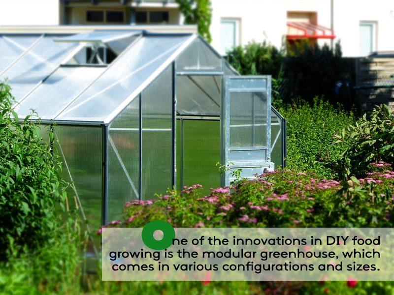 Vegetable Gardening Ideas