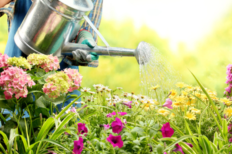 gardening is good for your health - Garden Designs