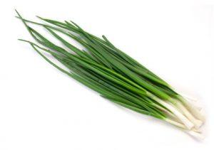 veggies - onion spring
