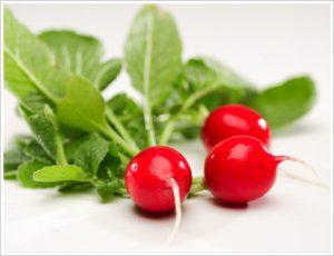 veggies - radish