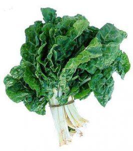 veggies - silverbeet