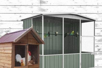 How to Choose an Aviary for Your Pet Birds