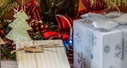 10 Christmas Gift Ideas for the Home and Garden