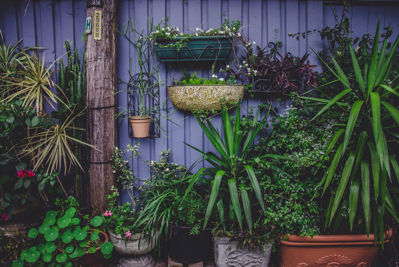 Container Gardening - choose the right container