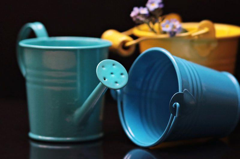 Container Gardening - proper watering