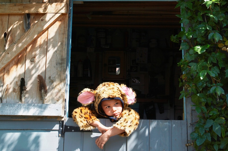 Childproof the Garden Shed - safety first