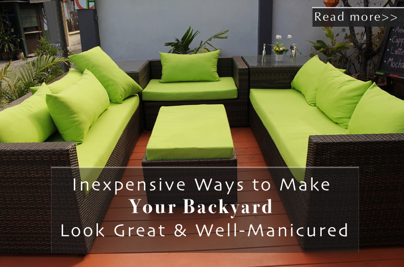 Ways to keep your backyard look great - read more