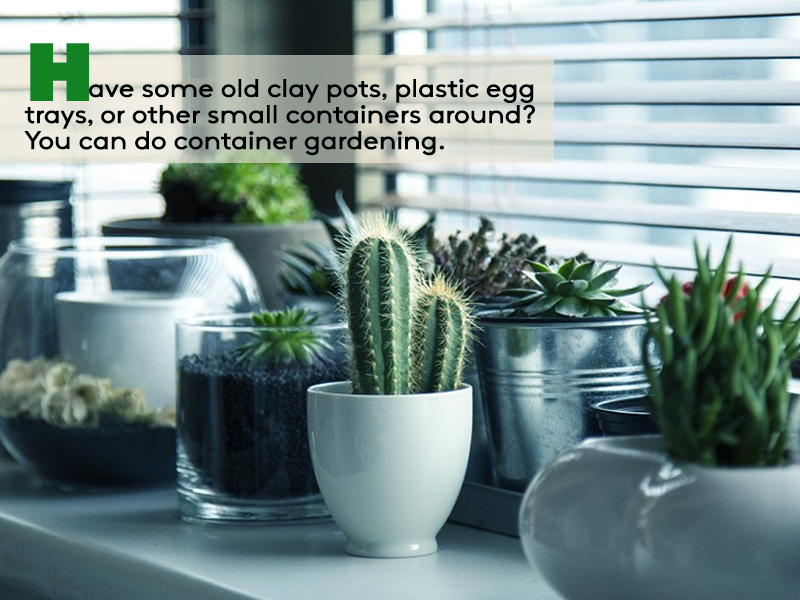 container gardening - read more