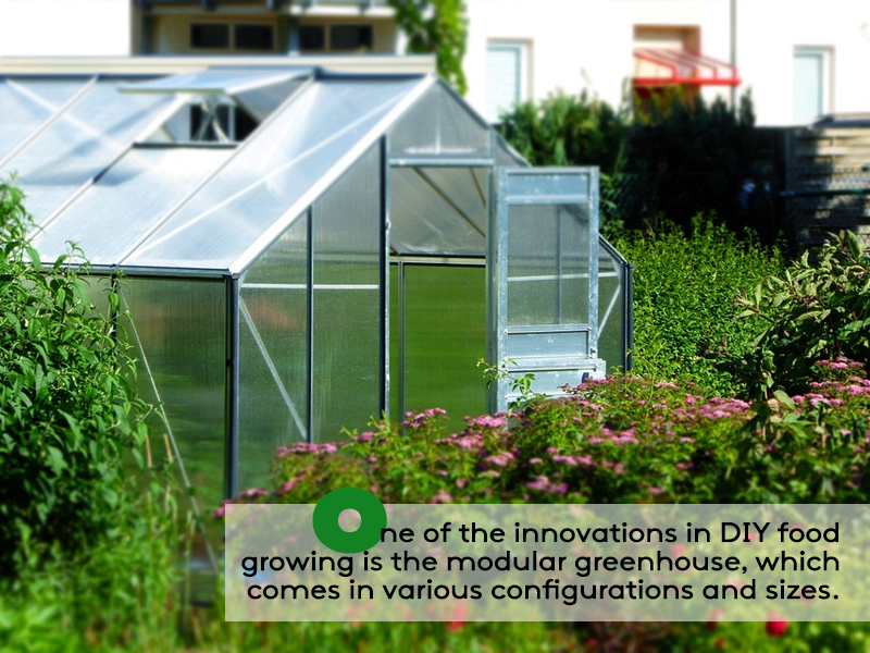 Vegetable Gardening Ideas - invest on small modular greenhouse
