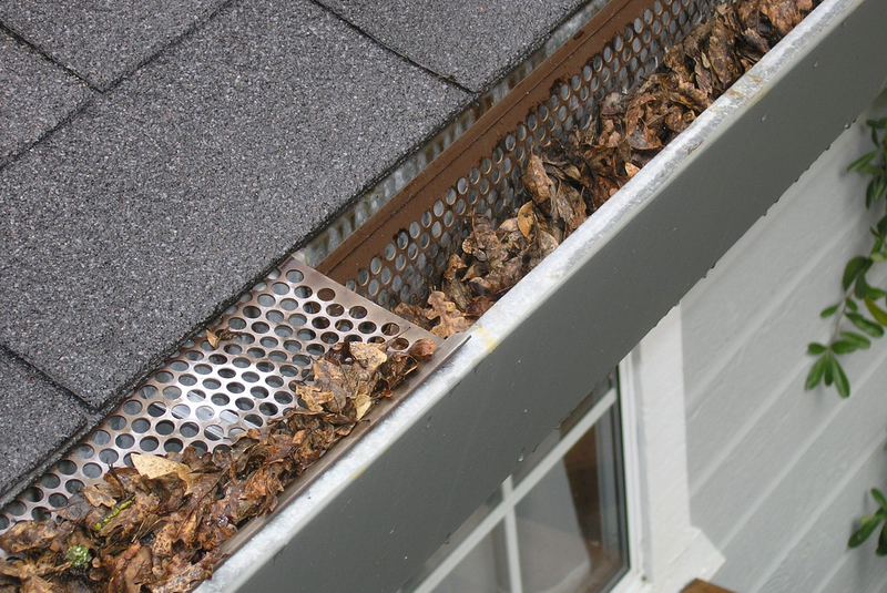 CLOGGED GUTTERS - old leaves