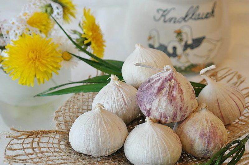 kitchen spices - Garlic