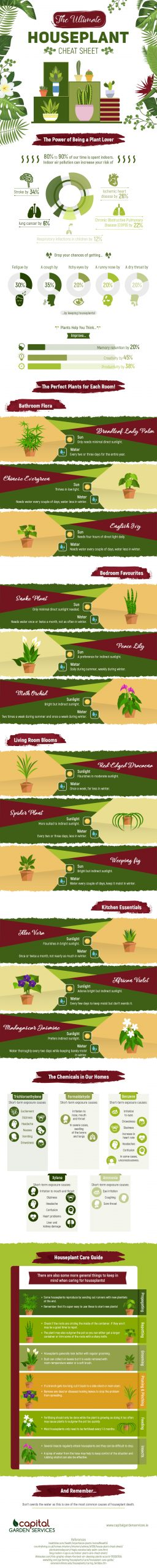 Houseplants - cheat sheet