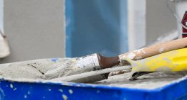 Is Your Home Harming You? Mould, Lead Paint and Asbestos Poisoning