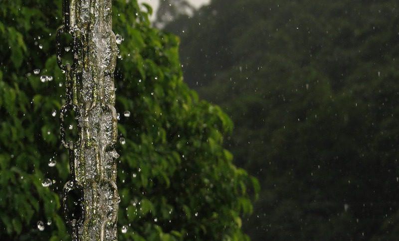 harvesting rainwater- rain chain