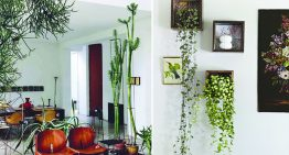 Indoor Garden Design Ideas to Bring Some Greenery into Your Space