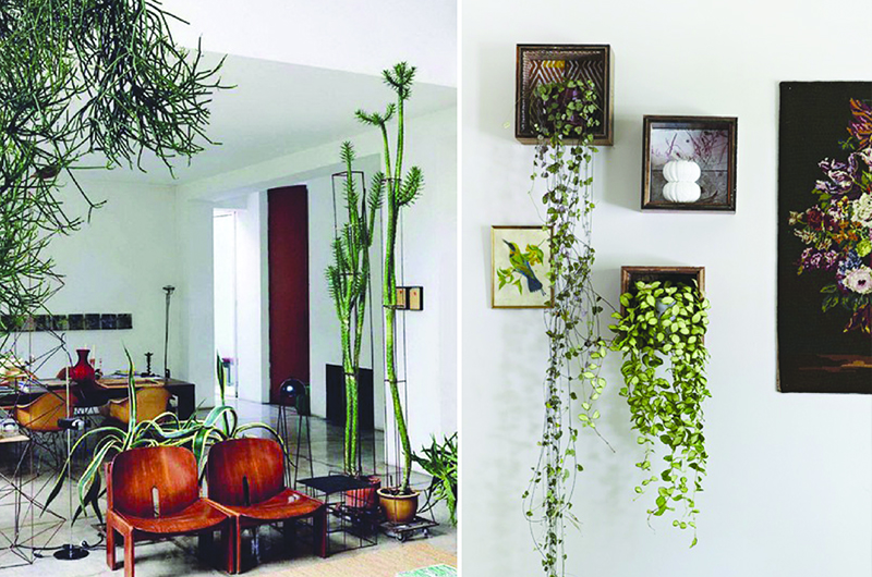 Indoor garden - check for space