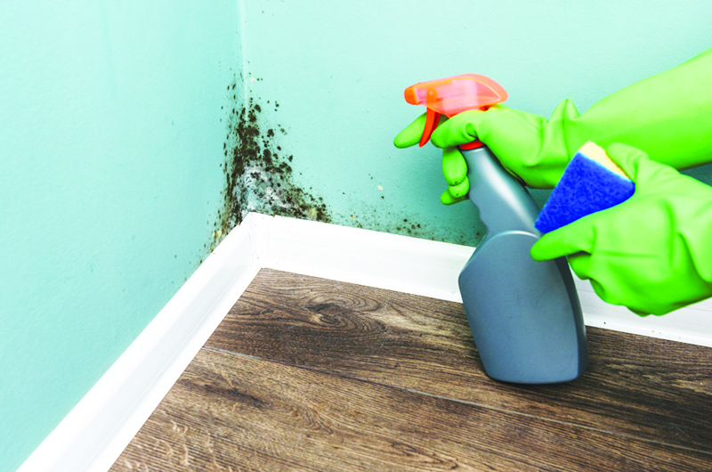 Eco-friendly Cleaning Tips For Your Home